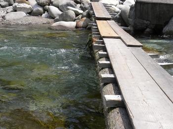 丸太の橋.jpg