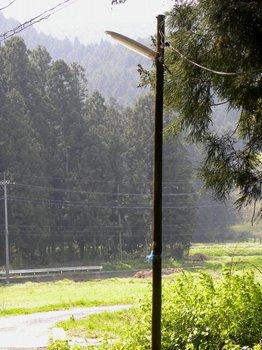 木の電信柱.jpg