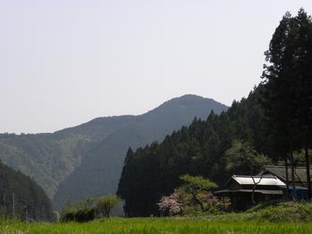 田舎な風景.jpg